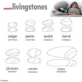 Coussins Livingstones Smarin